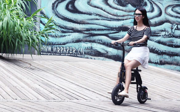 portable foldable bike
